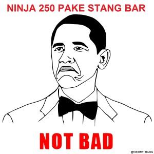 STANG BAR MEME